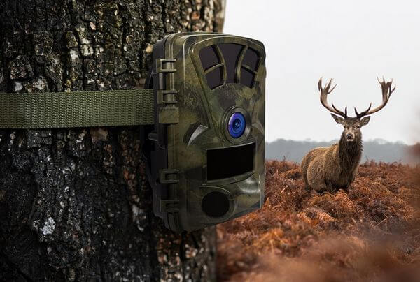 Perfect Trail Cam With WiFi, Night Vision, App